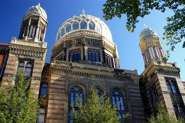 Nova sinegoga